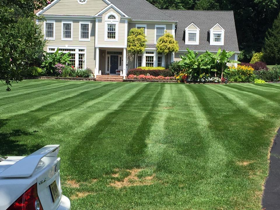 Landscape Maintenance - Basking Ridge New Jersey
